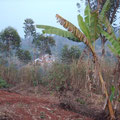 Quartier de Mbouo (saison sèche)