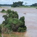 Fleuve Sanaga