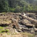 Chutes d'Ekom Nkam en saison sèche