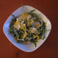 Rucula-Linsen Salat mit Kefir-Balsamicodressing
