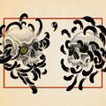 菊髑髏 B5サイズ  ¥50,000-