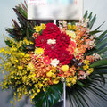 S066スタンド花・ロビー花 公演御祝・開店御祝におすすめ(東京23区内送料無料)