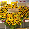 S093スタンド花・ロビー花 公演御祝・開店御祝におすすめ(東京23区内送料無料)