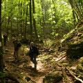 Ungarn - Naturtour - Wanderung im Bükk Nationalpark