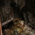 Slowakia - Naturtour - Mala Fatra Nationalpark