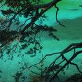 """... den magischen """"Grünen See"""" von Tragöß"""