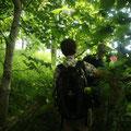 """Wir erkunden die """"Urwald-Insel"""" Vilm"""