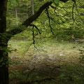 ... wandern wir auf Indianerpfaden entlang des wohl schönsten Flußes der Ostalpen