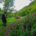 Wir starten mit einer Wanderung im wildromantischen Nationalpark Thayatal... (Bild: Simon Wagenhofer)