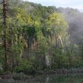 """Naturschönheiten Kroatiens"" - Plitvice Seen"