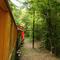 Ungarn - Naturtour - Per Schmalspureisenbahn in den Bükk Nationalpark