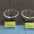 意外と知らない緑茶の世界 で使用の茶葉。世界各地に緑茶はあります。
