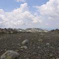Biotope de l'étage alpin - Monte Rinosu