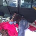 Udo und Aaron haben im Bus geschlafen