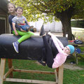 Spaß am Holzpferd