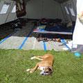 Bojana passt auf die Zelte auf :-)