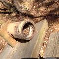 子供たちが手作りした竹の巣箱に小鳥が巣を作っていた見たいですね。