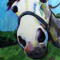 "Horse Face, acrylic on panel, 11""x14"", 2010"