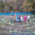 うずまき畑収穫祭。中央に集まる妖精たち。笑