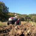 芋屋のセガレ、トラクターで芋掘りだ~♪ ♪ド♪ド♪ド♪ド♪ド~♪