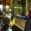 Kinderführung im Tierpark Bochum