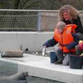 Seehundfütterun während eines Kindergeburtstages im Tierpark Bochum.