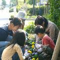 2006年 ベイシティ新浦安自治会 環境・交通部会を中心に実施したマンション周辺への花植えの様子 子どもたちも小さな手で花の苗を植えた