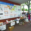 見明川自治会 震災後初めての夏祭りで震災関連のパネル展示を行った(撮影 広報委員 松村)
