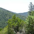 Belle vue sur les monts