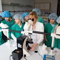 Medizin hautnah: Unter dem Mikroskop