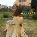 Adler - Holzkunst - Stammjob