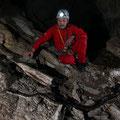 "Boa ""Maja Santa Maria"" (Epicrates Angulifer) - Cueva Boa Wladimir"