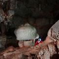 les Champignons de la grotte de Santa Catalina