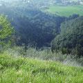 panorama dalla valle