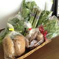 どんぐり村(さんさん市)で仕入れた新鮮野菜