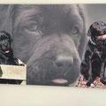 Collage erstellt und auf Leinwand gedruckt