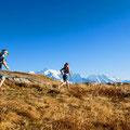 Trail dans les Aiguilles Rouges, Matthieu Brignon Guide à Aussois, Haute-Maurienne
