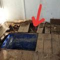 In diesem Spalt (roter Pfeil) wurde durch Spürhund Yuma...