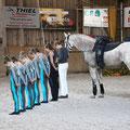 Cavallo Gruppe Pflicht