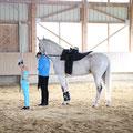 Nati, Cavallo und Regina
