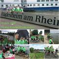 RTC Butzbach: Mainz-Kastel - Rüdesheim (36 km) vom 13. Juni 2015