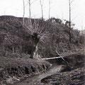 1er avril 1930 - Monstreux