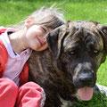 Kinder - und Hundesitting kombinierbar
