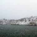 Nebel und Schnee begleiteten uns nach Troms.