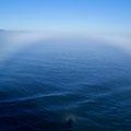 Der Nebel formte seltsame Gebilde in die Landschaft.