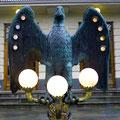 Auch in Trondheim gibt es Seeadler.