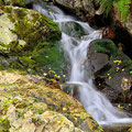 Der Regen macht aus Rinnsalen Wasserfälle.