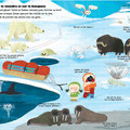 Mon tour du monde des animaux ed. Tourbillon © laurence jammes/all rights reserved