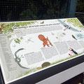 Ville de Genève | Parc animalier du Bois de la Bâtie | les animaux de la forêt autour du parc animalier | 2021 | illustrations: Nicole Conus.
