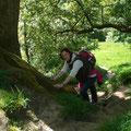 Emgland Reise - Glastonbury